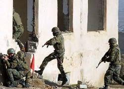 В Афганистан отправится грузинская рота