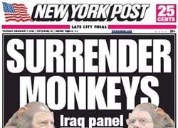 The New York Post обвинили в расизме за сравнение шимпанзе с Обамой
