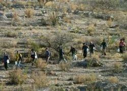Приток мексиканских гастарбайтеров в США сократился вдвое