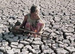 За последнее 25 лет мир стал более подвержен засухам