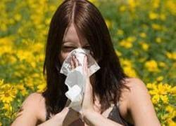 Аллергия: поймать и обезвредить
