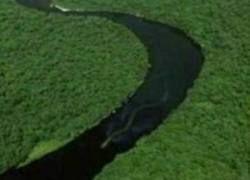 В Индонезии обнаружена гигантская мифическая змея