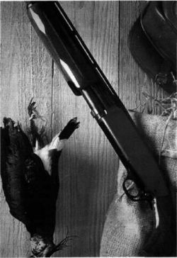 Пятиклассник застрелил беременную мачеху