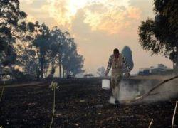 Новый пожар вспыхнул в Австралии