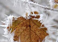 2008 год оказался самым холодным с начала века
