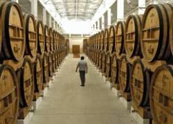 Импортеры вина продолжают уменьшать поставки в Россию