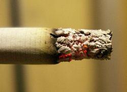 Ради пополнения казны сигареты могут подорожать в разы