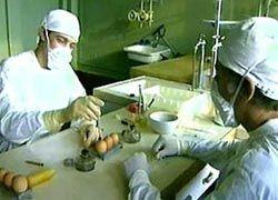Исследователи отправили коллегам вирус птичьего гриппа вместо вакцины