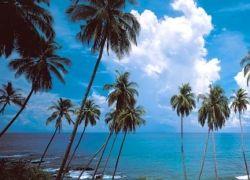 Популярность отдыха в Гоа стремительно сокращается