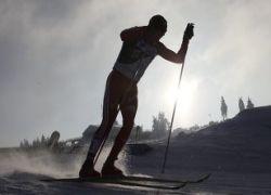 Лыжник Вылегжанин завоевал серебро на чемпионате мира