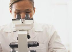 Ученые разработали новый метод доставки стволовых клеток
