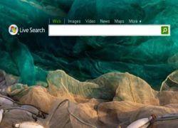 Microsoft тестирует новейшую поисковую систему Kumo
