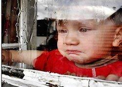 """Подари \""""Лексус\"""" детскому дому - преврати благотворительность в фарс"""