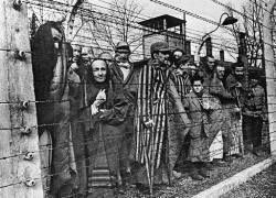 """Немецкий текстильный гигант обвинен в использовании \""""волос из Освенцима\"""""""
