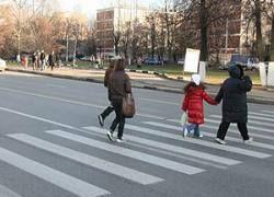 Штраф за непропущеных пешеходов увеличат в 20 раз?
