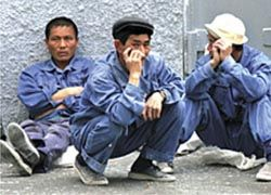 Что делать с безработными  гастарбайтерами?