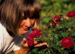 Весна во флаконе: ароматы природы для женщин