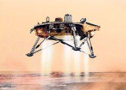 На Марсе есть насекомые?