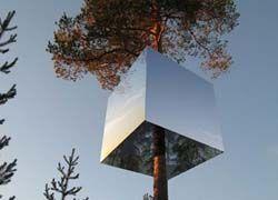 На севере Швеции постоят отель на деревьях