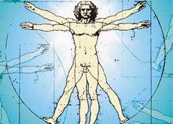 Интересные факты о человеке и его теле