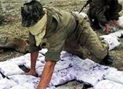 В Боливии уничтожено крупнейшее производство кокаина