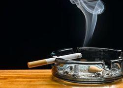 Бельгийским родителям запретят курить дома