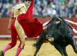 В Испании отменяют корриду