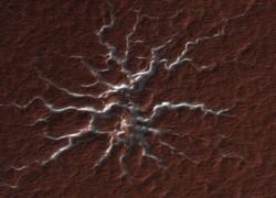 Странные объекты на поверхности Марса