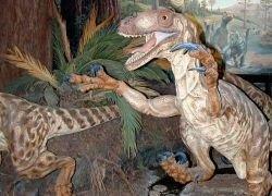 Найдена причина вымирания древних животных