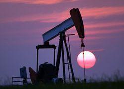 Стоимость барреля нефти за год упала в два раза