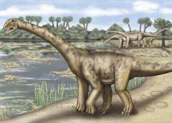 Ученые раскрыли секрет длинношеих динозавров