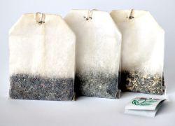 В знак протеста курильщики США шлют в Белый Дом чай