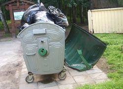 Москвичей заставят сортировать мусор  по закону