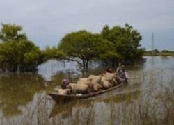 Африка страдает от невиданного наводнения