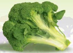 Капуста брокколи может защитить от язвы желудка