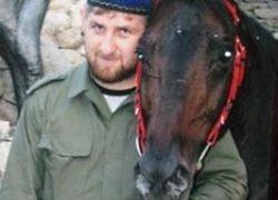 Конюх Кадырова и золотой пистолет