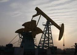 Цена на нефть упала ниже 50 долларов за баррель