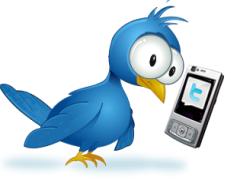 Какова роль Twitter в молдавской революции?