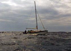 В Красном море едва не утонула яхта с туристами