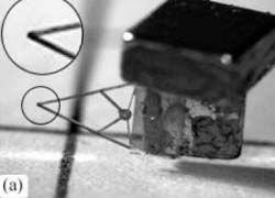 Канадские инженеры создали летающего микро-робота