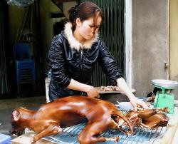 """Корейцы готовят \""""ресторанную экспансию\"""""""