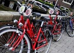 В Польше велосипедистов приравняли к автовладельцам