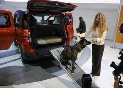 Honda сделала машину для собак