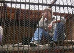 Оппозиционеры в Тбилиси посадят себя в клетки