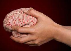 Вся правда о мозге: 5 мифов с разоблачением