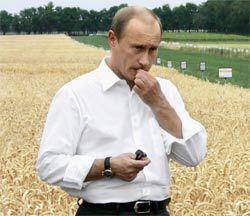 Почему Россия не может прокормить саму себя