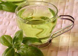 В Корее пройдет фестиваль зеленого чая