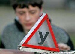 Около 270 московских автошкол могут лишиться лицензии