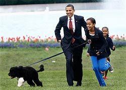 Про собаку Обамы написали детскую книгу