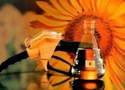 Компактные биореакторы обеспечат топливом всех желающих